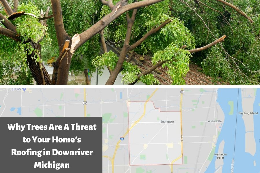 Why Trees Are A Threat to Your Home's Roofing in Downriver Michigan