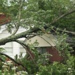 If Your Home's Roof in Ann Arbor Michigan Has These Problems: It's Unsafe